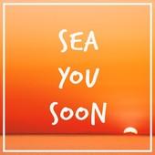 Toi petite plage et ton doux sable fin, on se retrouve bientôt pour de nouvelles aventures (et un bronzage encore plus beau). Tu me manques déjà 😢 . . #backtowork #bureau #endofthesummer #soleildesiles #sea #plage #vacances #holidays #summer #été #tan #mood #moodoftheday #soleil #beach #monoi #sundaymood #jeveuxencoredesvacances